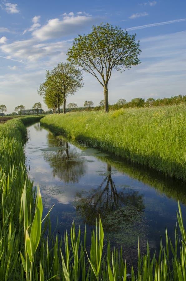 Holländsk jordbruksmark royaltyfri fotografi