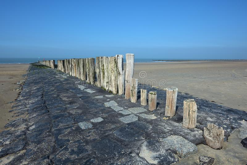 Holländsk kust nära Cadzand arkivbild
