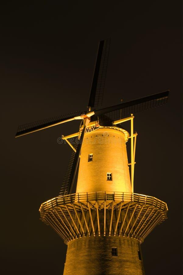 holländsk nattwindmill royaltyfri foto