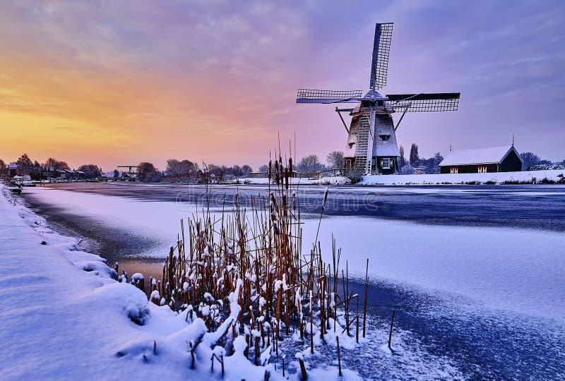 Holländsk väderkvarn i snön av en holland vinter arkivfoto