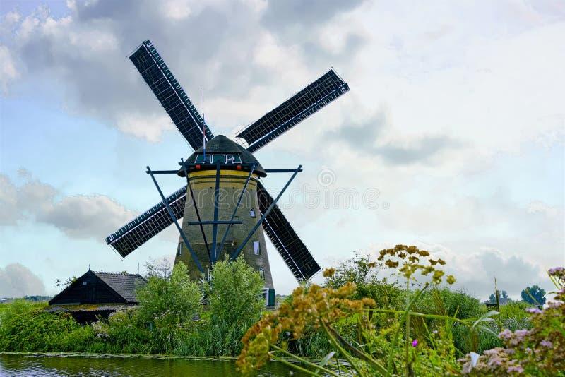 Holländsk väderkvarn med vildblommor royaltyfri fotografi