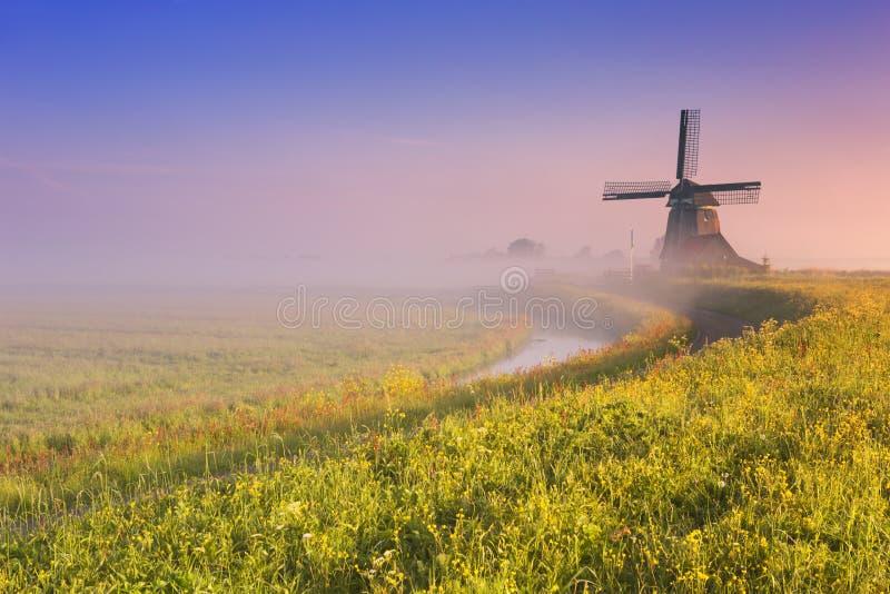 Holländsk väderkvarn på soluppgång på en dimmig morgon arkivfoto