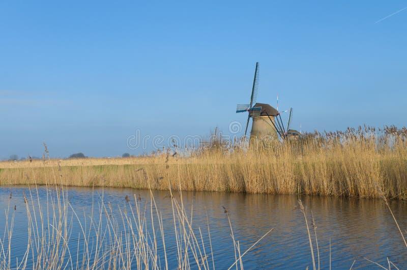 Holländska väderkvarnar royaltyfria foton