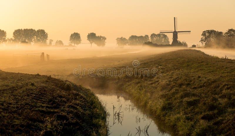 Holländskt landskap i morgonmist fotografering för bildbyråer