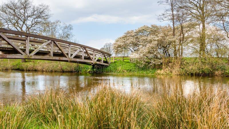 Holländskt landskap med bron och vatten arkivbilder