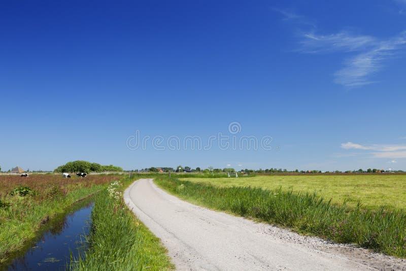 Holländskt landslandskap på en klar solig dag arkivfoto