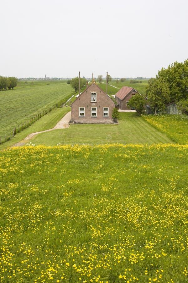 holländskt lantgårdhus royaltyfri foto