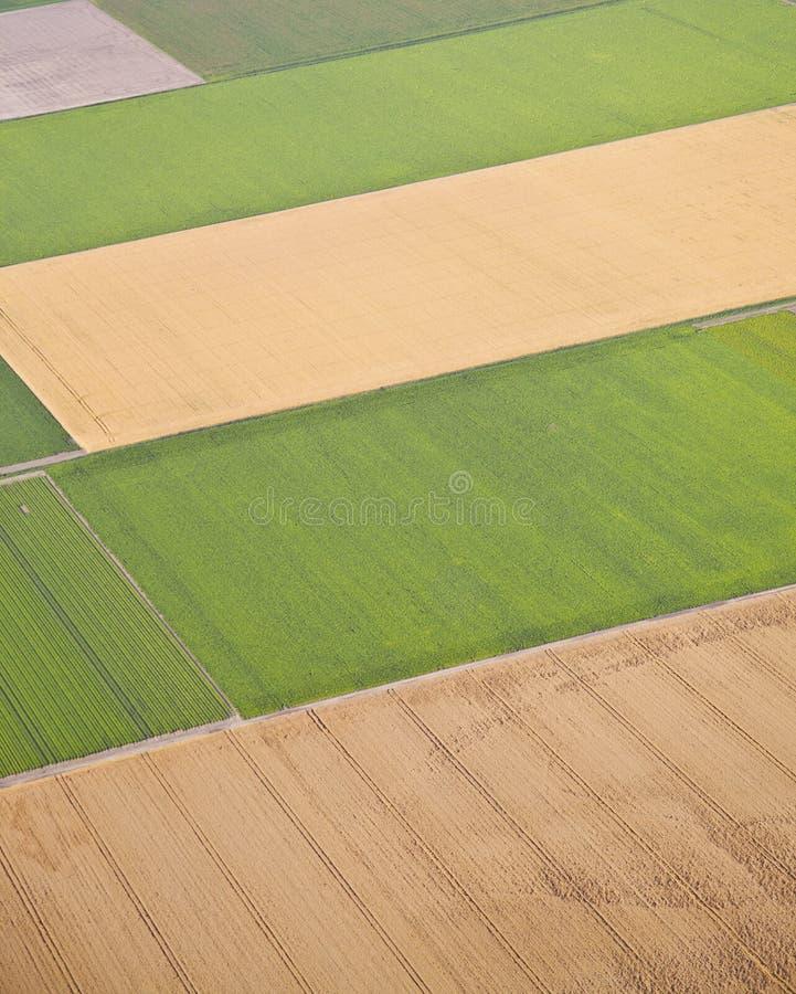 Holländskt lantgårdlandskap från över arkivbild