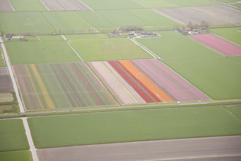 Holländskt lantgårdlandskap från över fotografering för bildbyråer