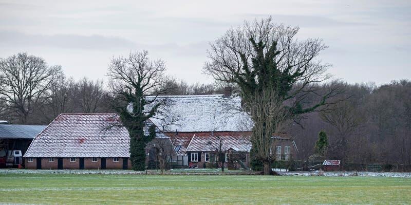 Holländskt lantligt vinterlandskap med lantgårdhuset arkivbilder
