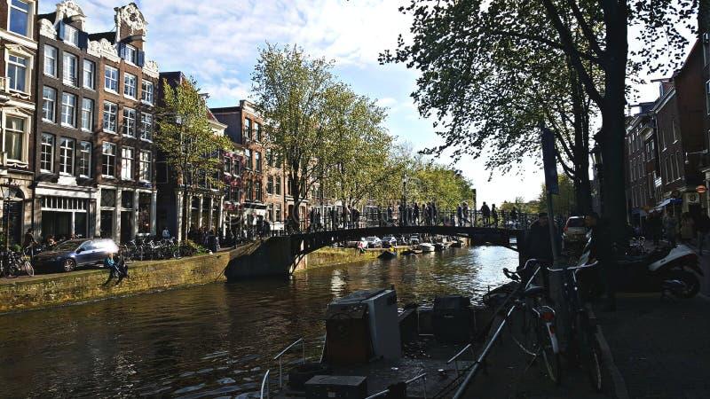 holland royaltyfri bild