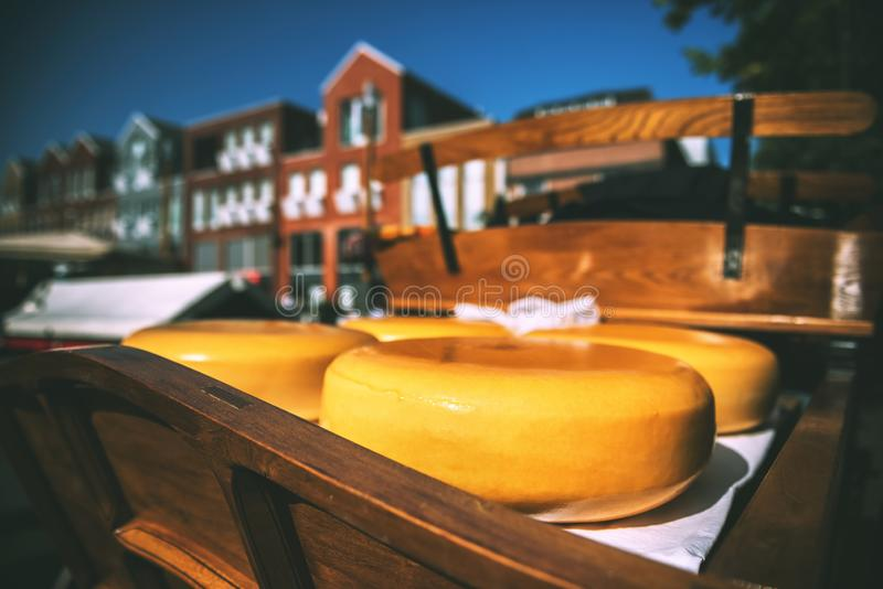 Holland cheese rounds at traditional market stock photo