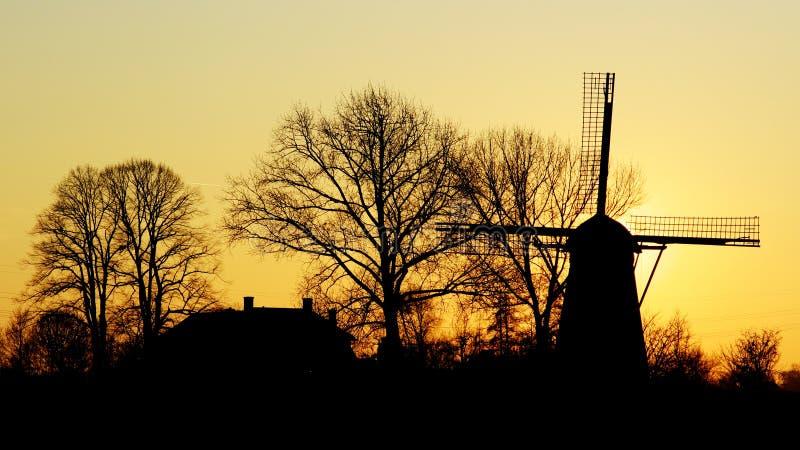 Holland ensolarado imagem de stock royalty free
