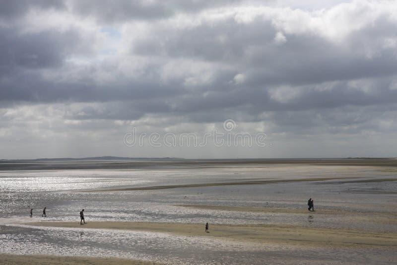Holland för Wadden hav lågvatten arkivfoton
