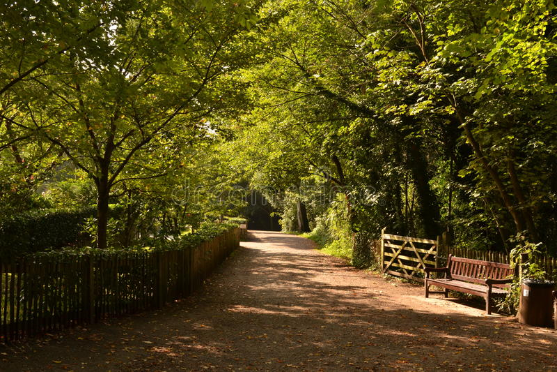 Holland Park London royaltyfri fotografi