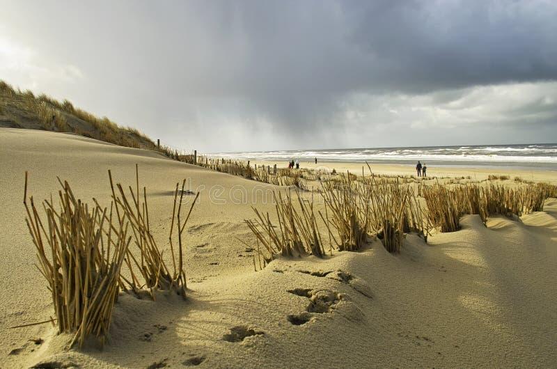 holland plażowy odprowadzenie zdjęcia stock