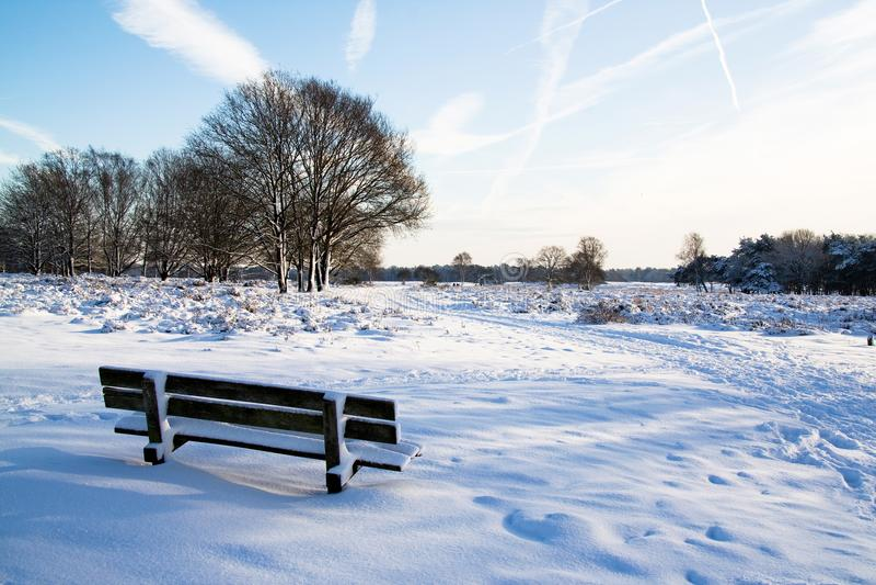 holland vinter royaltyfria bilder