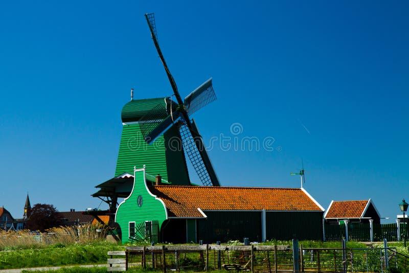 holland wiatraczek fotografia royalty free