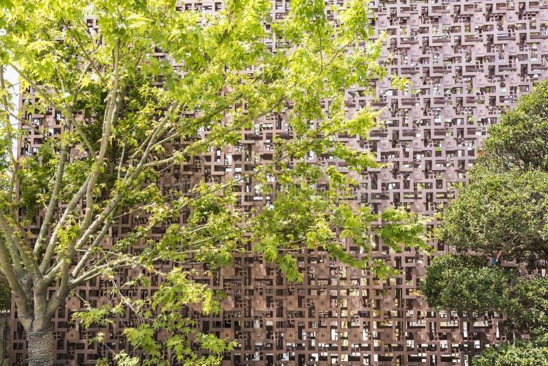 Holle uit muur en groene boom stock foto