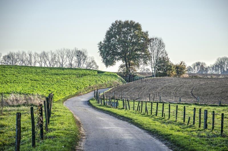 Holle weg in een heuvelig landschap stock afbeeldingen