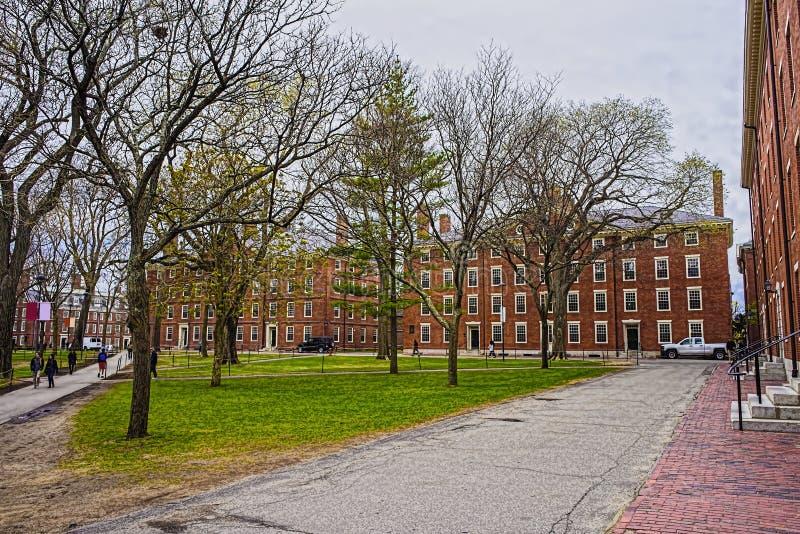 Hollis Hall и Stoughton Hall на дворе Гарварда стоковые фото