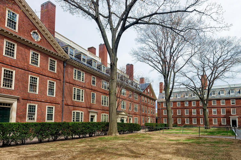 Hollis Hall e Stoughton Corridoio all'iarda Cambridge mA America di Harvard fotografie stock