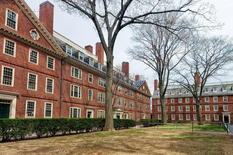 Hollis Hall e Stoughton Salão na jarda Cambridge miliampère América de Harvard fotos de stock