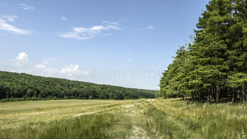 In the hollow between the hills there is a barely noticeable road. In the hollow between the hills passes a barely noticeable, grass-covered road royalty free stock photos