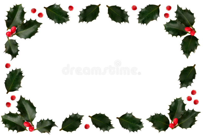 Holly. Leaf and Berry Border