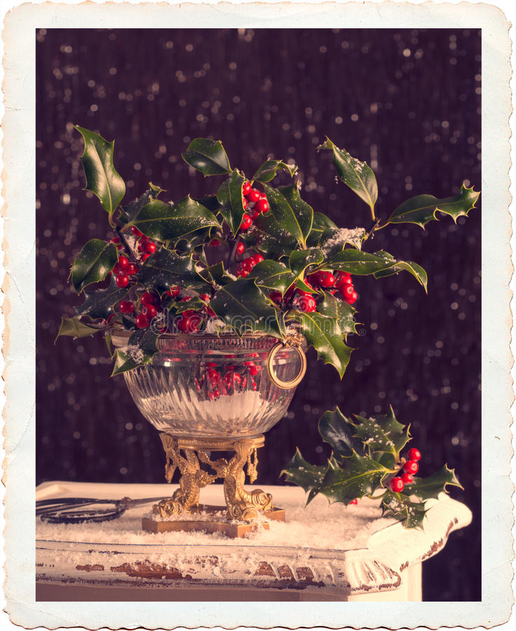 Holly & Berries. Elegant antique vase full of holly and berries with vintage filter effect and antique border stock photo