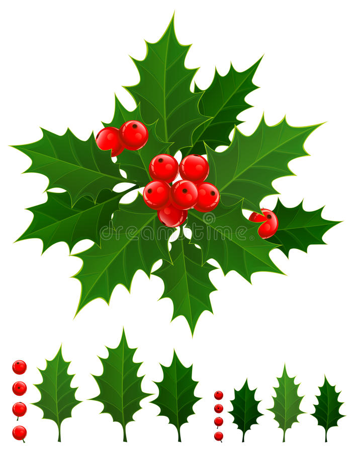 Download Holly berry stock vector. Image of illustration, garland - 21746489