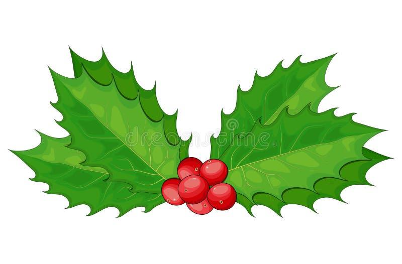 Holly berry, Christmas leaves and fruits icon, symbol, design 白色背景中的冬季矢量图插图 Decorative twigs, 库存例证