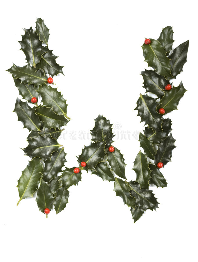 Holly With Berry Letter W stock images