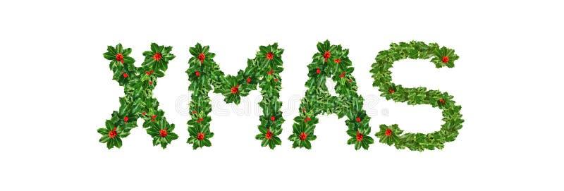 Holly With Berry Letters-alfabet Holly Leaves met bes in de vorm van Kerstmis Ge?soleerd op wit royalty-vrije stock fotografie