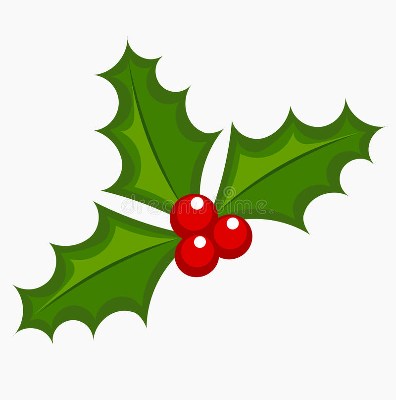Free Holly Berry Vector Royalty Free Stock Image - 48080126