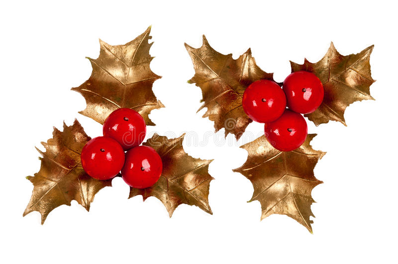 Holly branch. Christmas symbol royalty free stock photography