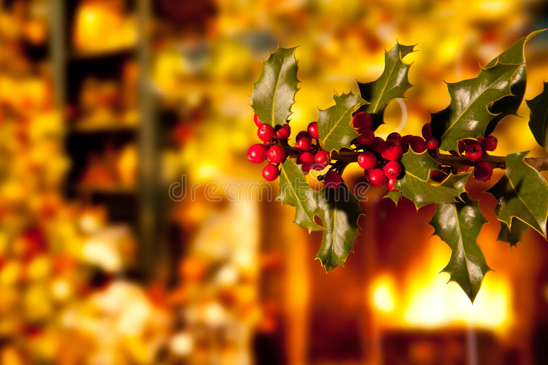 Holly Branch with Red Berries. In a Warm House Interior royalty free stock photography