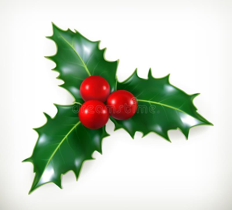 Holly, Christmas decoration royalty free illustration
