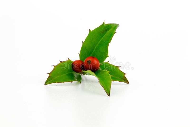 Holly gałąź z czerwonym jagod bożych narodzeń symbolem Wakacyjna tradycyjna dekoracja nowego roku wianku części zieleń opuszcza O zdjęcia royalty free