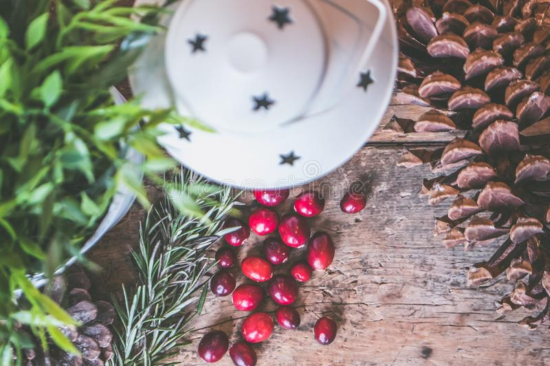 Holly Plant Berries Beside White Lantern royalty free stock images