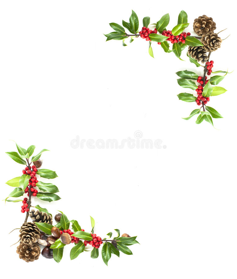 Holly and red berries border. Christmas winter holly and red berries frame royalty free stock photos