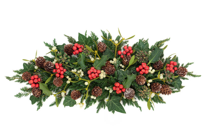 Holly and winter greenery stock image of