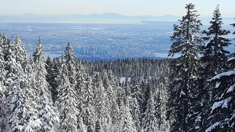Hollyburn jätte- punkt av sikten på den Vancouver staden arkivfoto