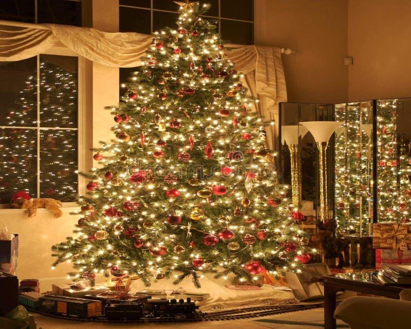 Hollydays julSanta Clause Green gran fotografering för bildbyråer
