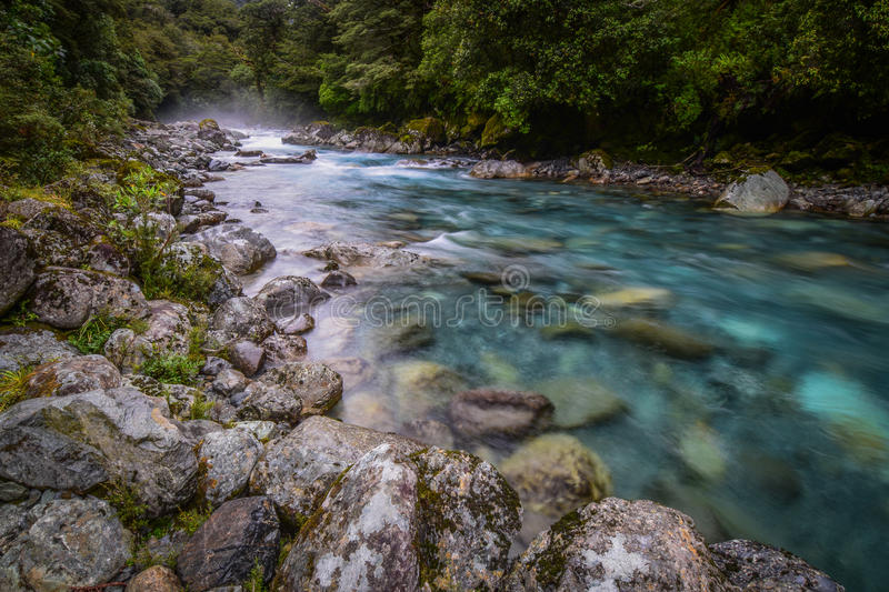 Hollyford River 1 stock images