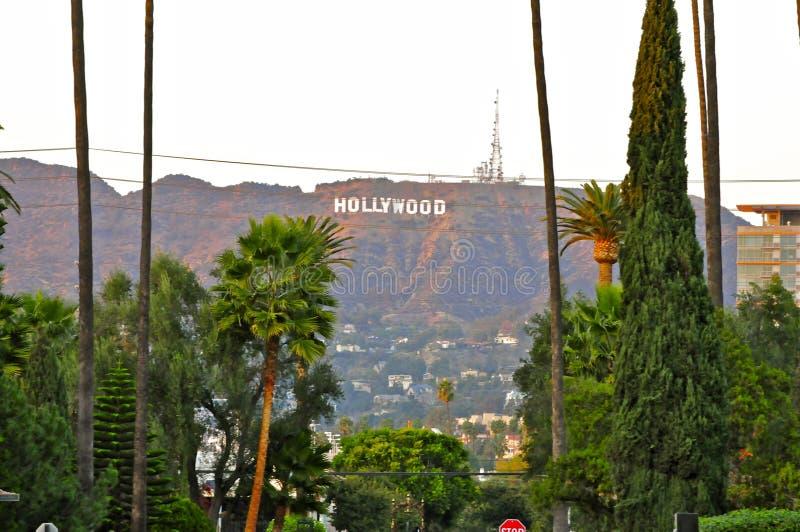 Hollywood-Schriftzug von Kirchhof Hollywood für immer stockbilder