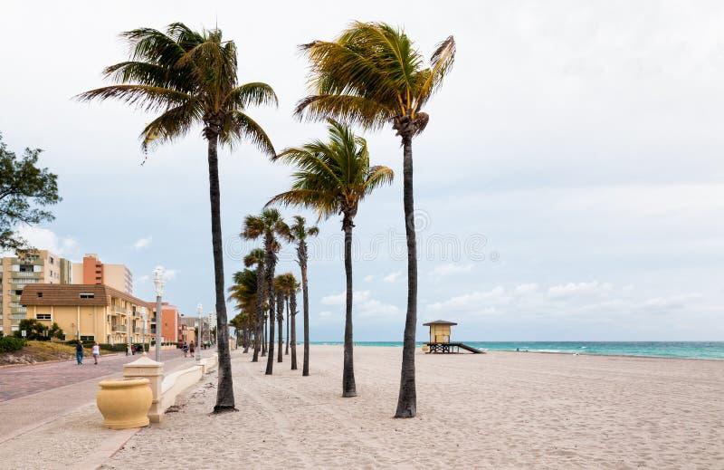Hollywood strand, Florida fotografering för bildbyråer