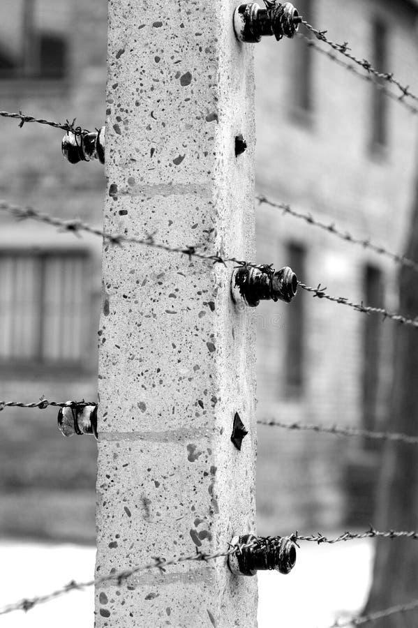Holocaust stock photography