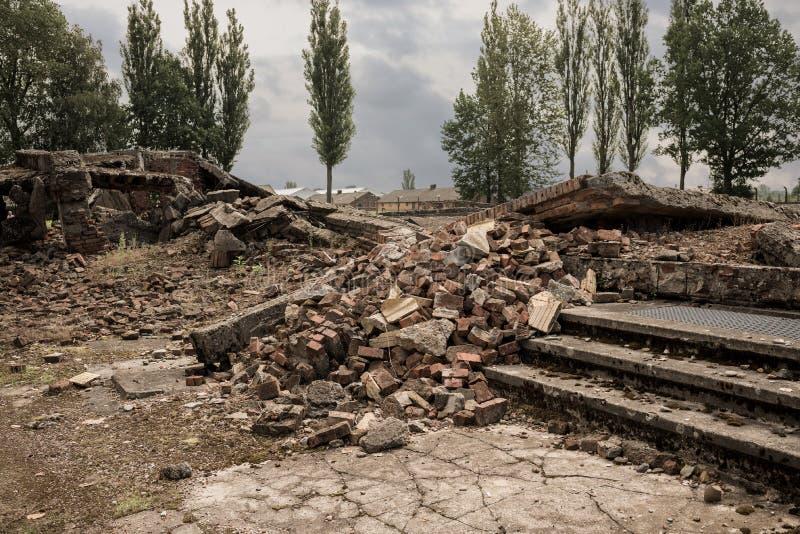 Holocausto Auschwitz conmemorativo - Birkenau - Polonia imágenes de archivo libres de regalías