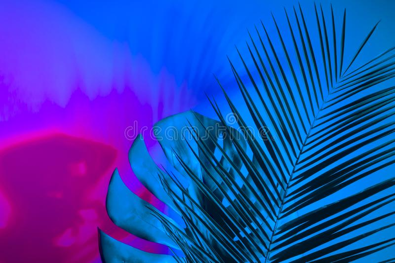 Holographic leaves. Concept art. Minimal surrealism background.  royalty free stock photography